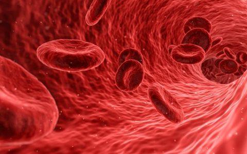 Anemia, czyli nieprzypadkowe zmęczenie